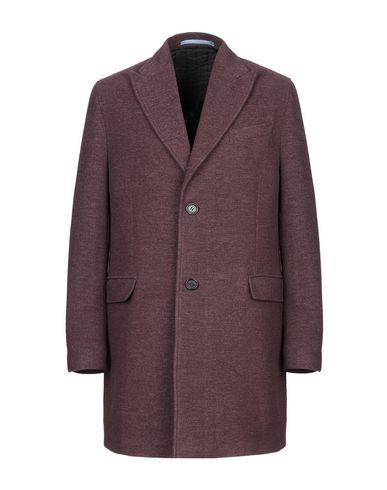 Фото - Мужское пальто или плащ  красно-коричневого цвета