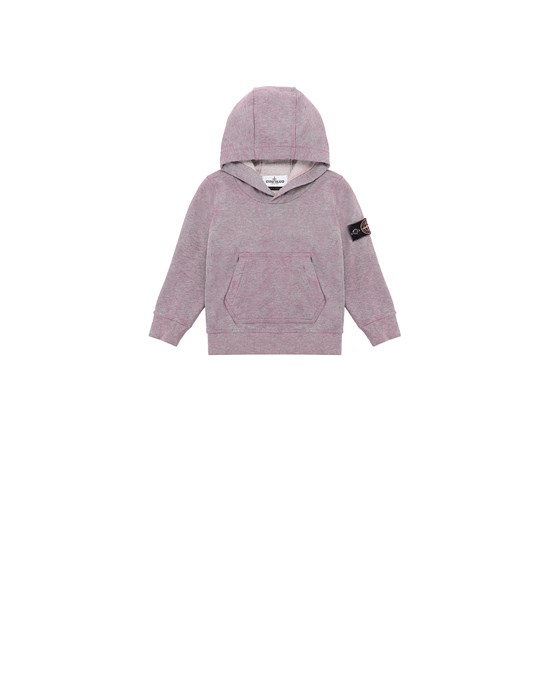 Sweatshirt Herr 61044 DUST COLOUR TREATMENT Front STONE ISLAND BABY