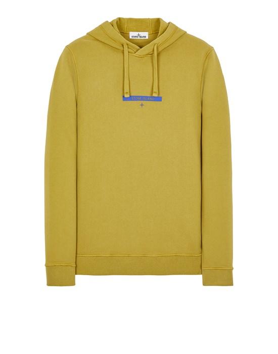 Sweatshirt Herr 65685 BRUSHED COTTON FLEECE_PRINT 'MICRO GRAPHICS TWO' Front STONE ISLAND