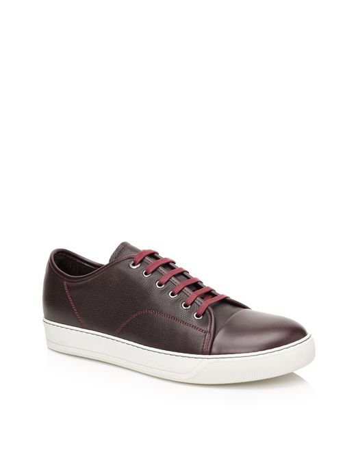 lanvin low sneakers in brilliant grain calfskin and nappa calfskin men