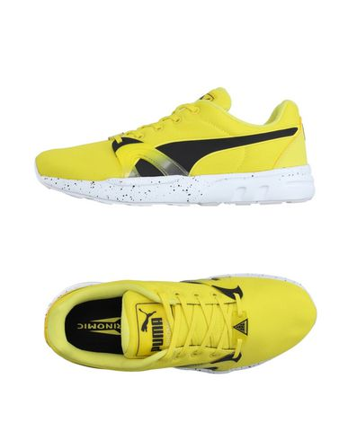 Foto PUMA Sneakers & Tennis shoes basse uomo