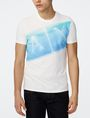 ARMANI EXCHANGE A|X Wave Crew Graphic T-shirt Man f