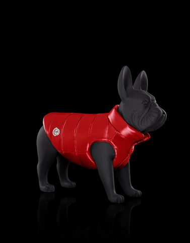 moncler mondog for unisex dogwear official online store rh store moncler com