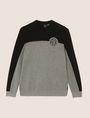 ARMANI EXCHANGE COLORBLOCK CIRCLE LOGO SWEATER Pullover Man r