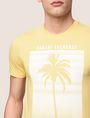 ARMANI EXCHANGE パームツリープリント Tシャツ ロゴTシャツ メンズ b