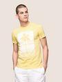ARMANI EXCHANGE パームツリープリント Tシャツ ロゴTシャツ メンズ f