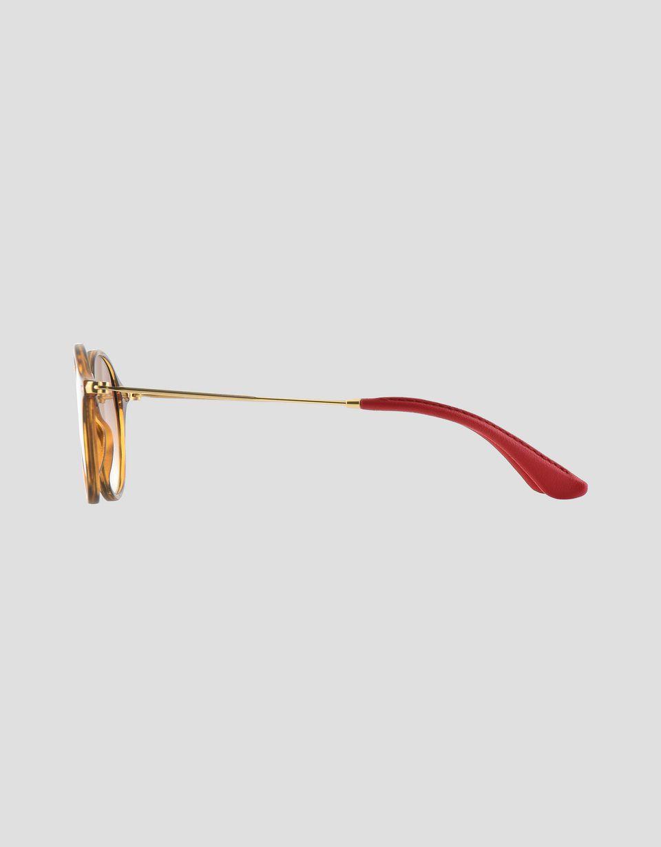 Scuderia Ferrari Online Store - Lunettes de soleil Ray-Ban for Scuderia Ferrari Round Combo couleur marron havane 0RB2447NM - Lunettes de soleil