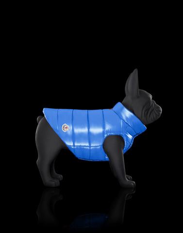 MONDOG Colore Turchese Categoria Dogwear
