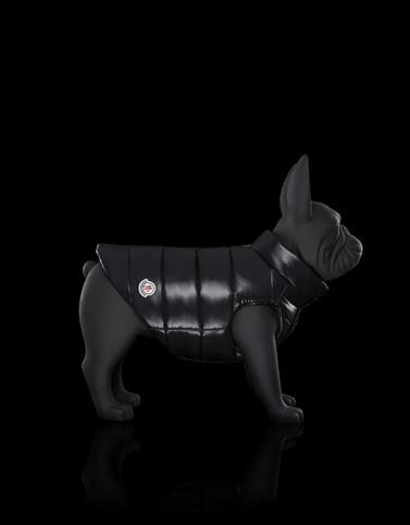MONDOG Colore Nero Categoria Dogwear