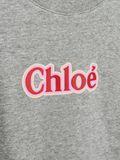 Dress Childrenswear