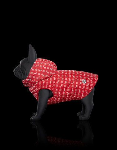 MONDOG Red Category Dogwear Woman