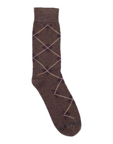 Носки и колготки HARMONT&BLAINE