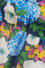 CARVEN Floral-print cotton-voile mini dress