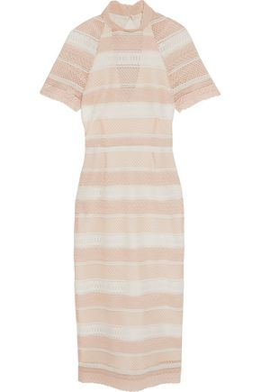 REBECCA VALLANCE Testa open-back striped guipure lace midi dress