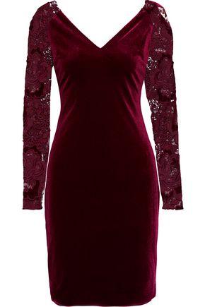 BADGLEY MISCHKA Guipure lace-paneled velvet dress