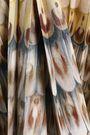 VALENTINO Pleated printed wool and silk-blend midi dress