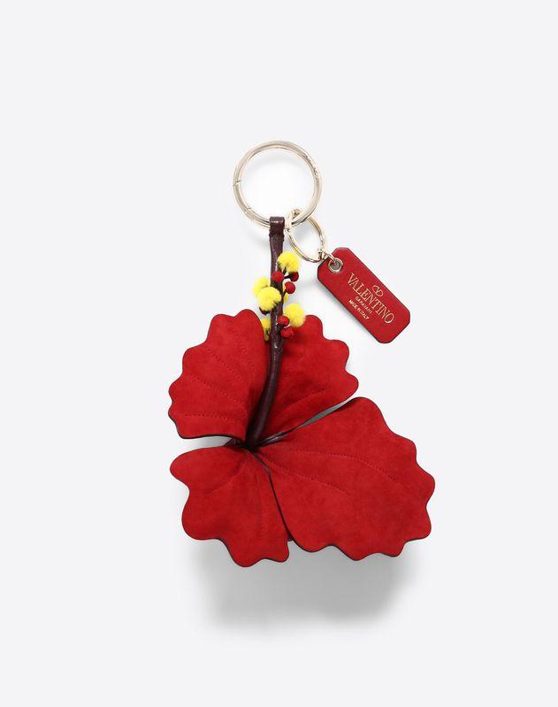 Hibiscus Charm