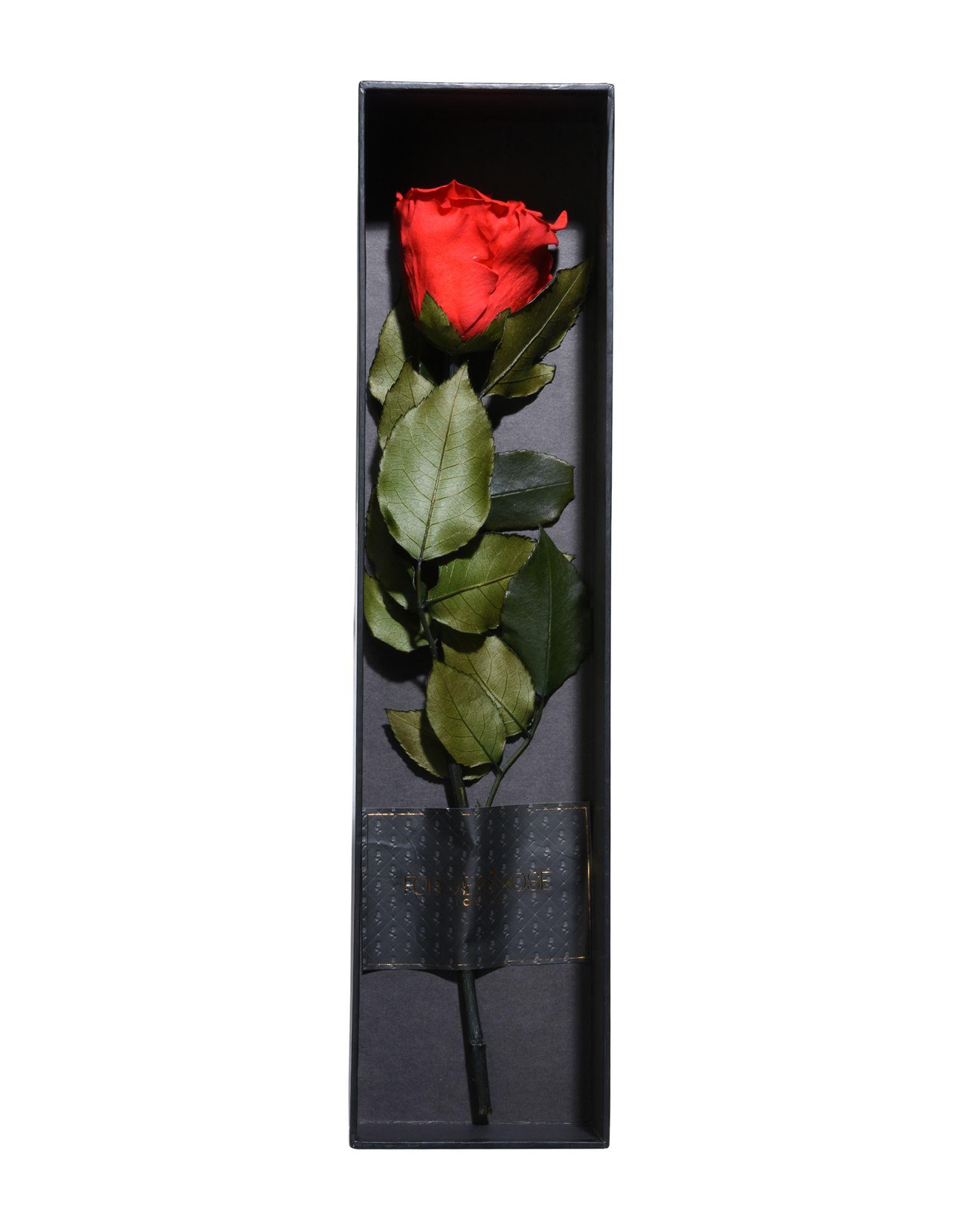 FOREVER ROSE London Unisex 雑貨 Love Rose レッド