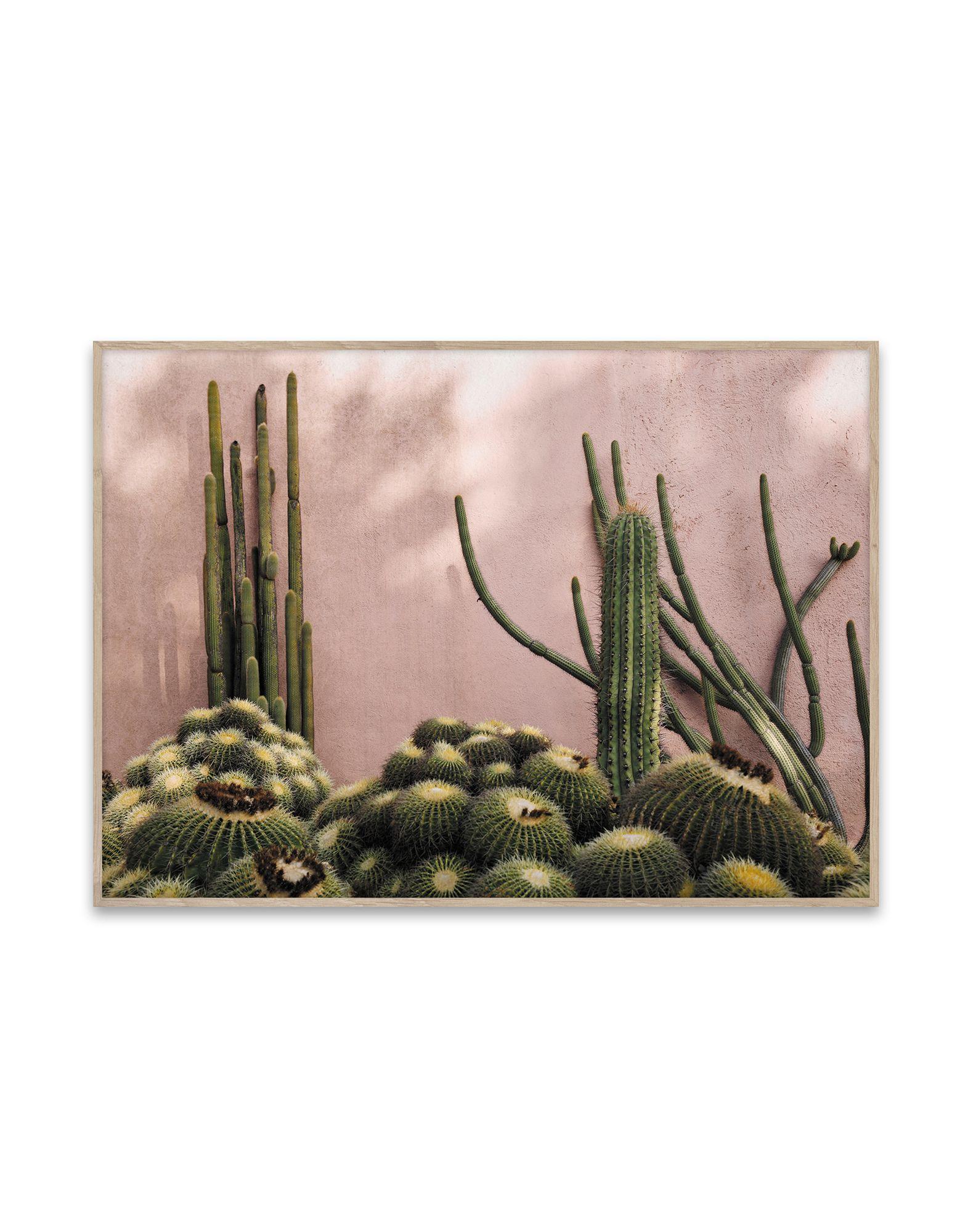 《セール開催中》PAPER COLLECTIVE Unisex デコレーション (-) 指定外繊維(紙) Plants on Pink