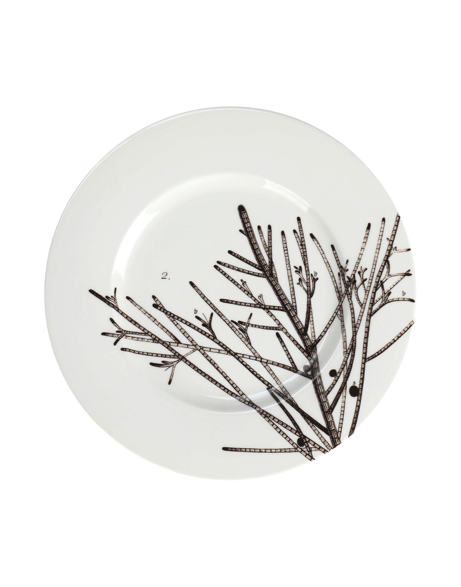 PORTEGO Блюдо кухня катюша vk16