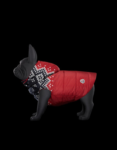 MONDOG Red Dogwear
