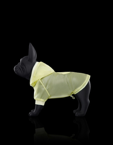 MONDOG Yellow Dogwear