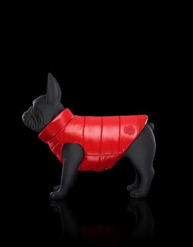 MONDOG Red Moncler Poldo Dog Couture Genius Woman