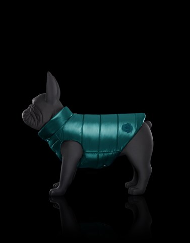 REVERSIBLE MONDOG Bottle green Dogwear Woman