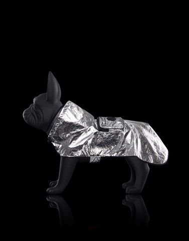 MONDOG CLOAK Silver Moncler Poldo Dog Couture Genius Woman