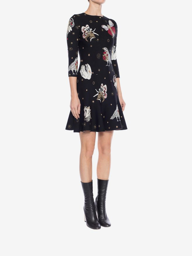 ALEXANDER MCQUEEN Gothic Fairytale Mini Dress Mini Dress Woman d