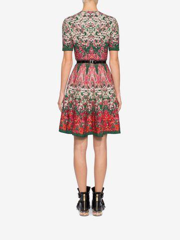 ALEXANDER MCQUEEN Flowerbed jacquard knit Mini Dress Mini Dress Woman e
