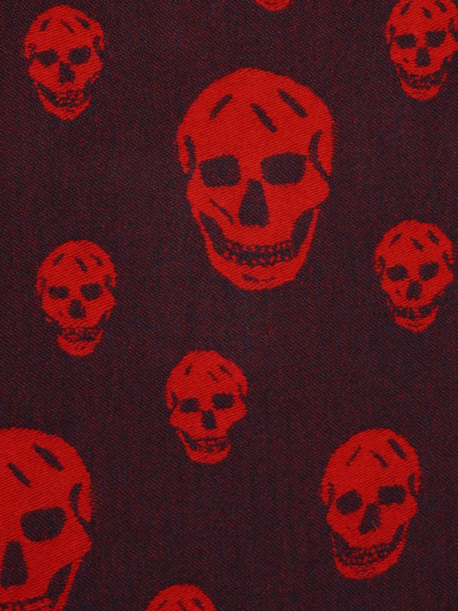 ALEXANDER MCQUEEN Large Skull Shawl Men's Scarf U e