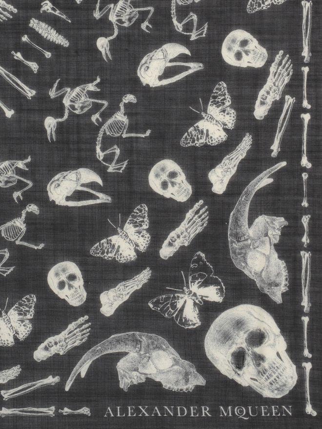 ALEXANDER MCQUEEN Skulls and Bones Scarf Fashion Scarf U d